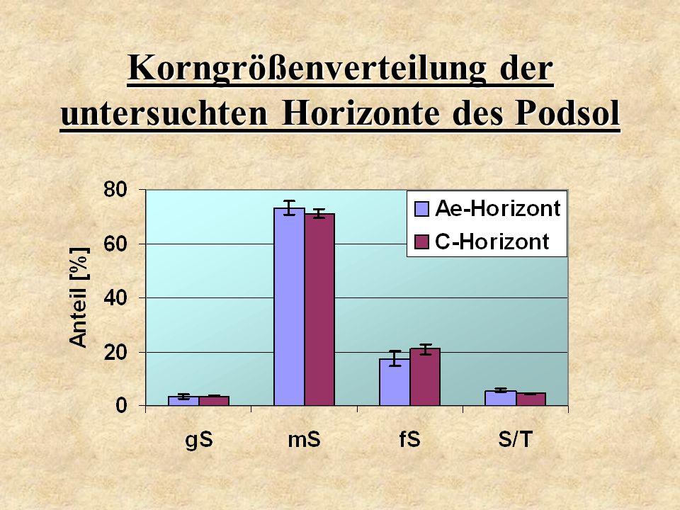 Korngrößenverteilung der untersuchten Horizonte des Podsol