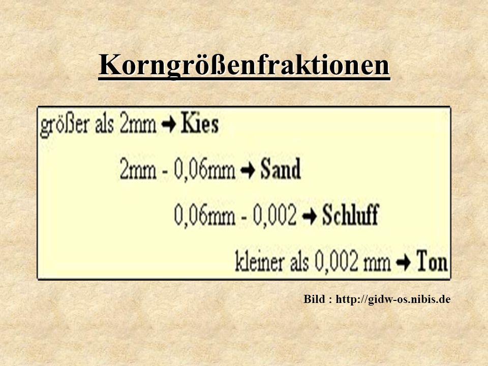 Korngrößenfraktionen Bild : http://gidw-os.nibis.de
