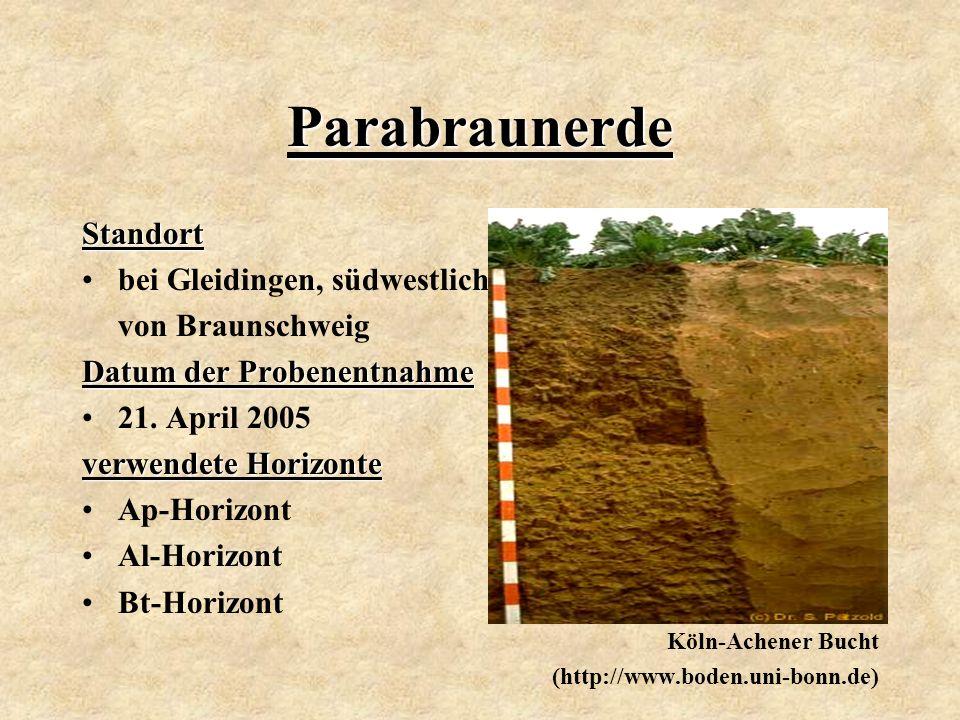 Parabraunerde Standort bei Gleidingen, südwestlich von Braunschweig Datum der Probenentnahme 21. April 2005 verwendete Horizonte Ap-Horizont Al-Horizo