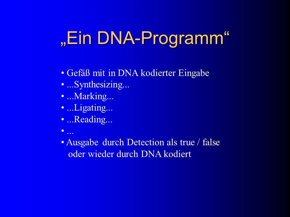 Ein DNA-Programm Gefäß mit in DNA kodierter Eingabe...Synthesizing......Marking......Ligating......Reading...... Ausgabe durch Detection als true / fa
