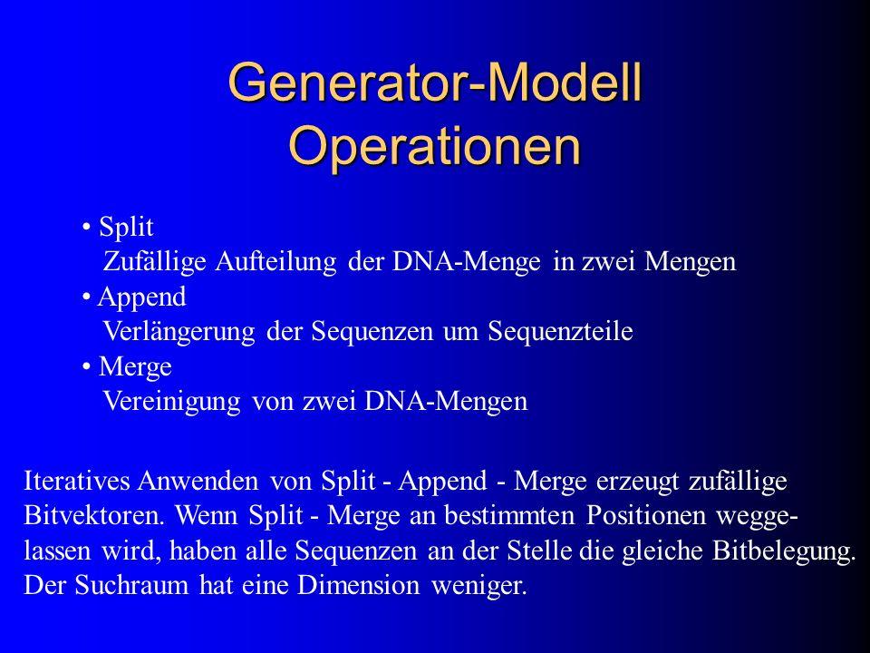 Generator-Modell Operationen Split Zufällige Aufteilung der DNA-Menge in zwei Mengen Append Verlängerung der Sequenzen um Sequenzteile Merge Vereinigu
