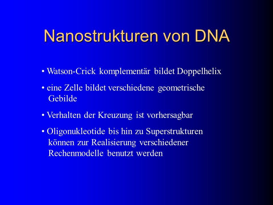 Nanostrukturen von DNA Watson-Crick komplementär bildet Doppelhelix eine Zelle bildet verschiedene geometrische Gebilde Verhalten der Kreuzung ist vor