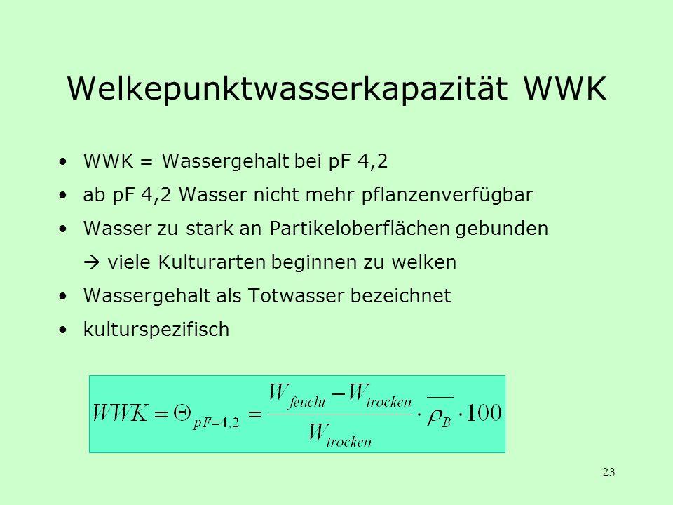 23 Welkepunktwasserkapazität WWK WWK = Wassergehalt bei pF 4,2 ab pF 4,2 Wasser nicht mehr pflanzenverfügbar Wasser zu stark an Partikeloberflächen ge