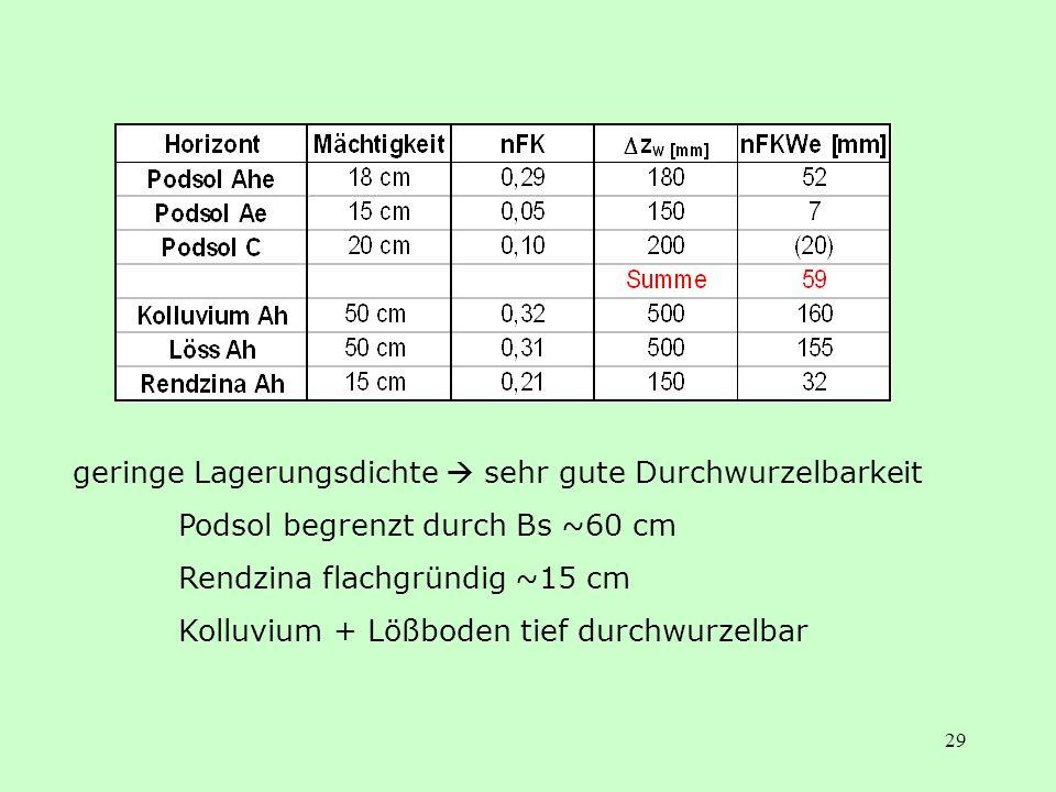 29 geringe Lagerungsdichte sehr gute Durchwurzelbarkeit Podsol begrenzt durch Bs ~60 cm Rendzina flachgründig ~15 cm Kolluvium + Lößboden tief durchwu
