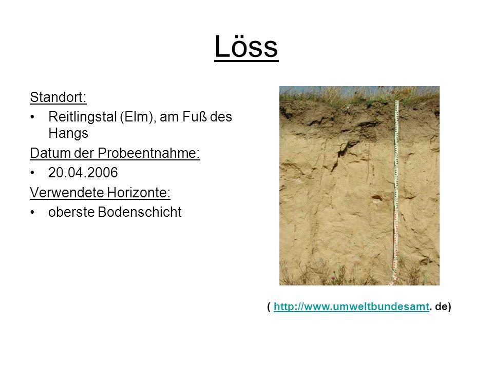 Löss Standort: Reitlingstal (Elm), am Fuß des Hangs Datum der Probeentnahme: 20.04.2006 Verwendete Horizonte: oberste Bodenschicht ( http://www.umwelt