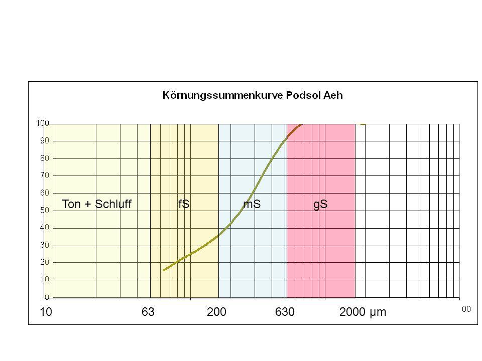 10200636302000 μm Ton + SchlufffSmSgS