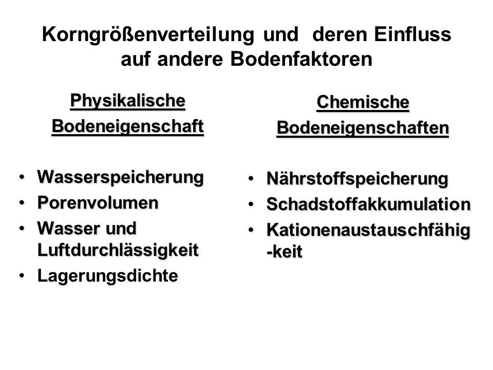 Ton und SchlufffSmSgS 10632006302000 Löss-Boden