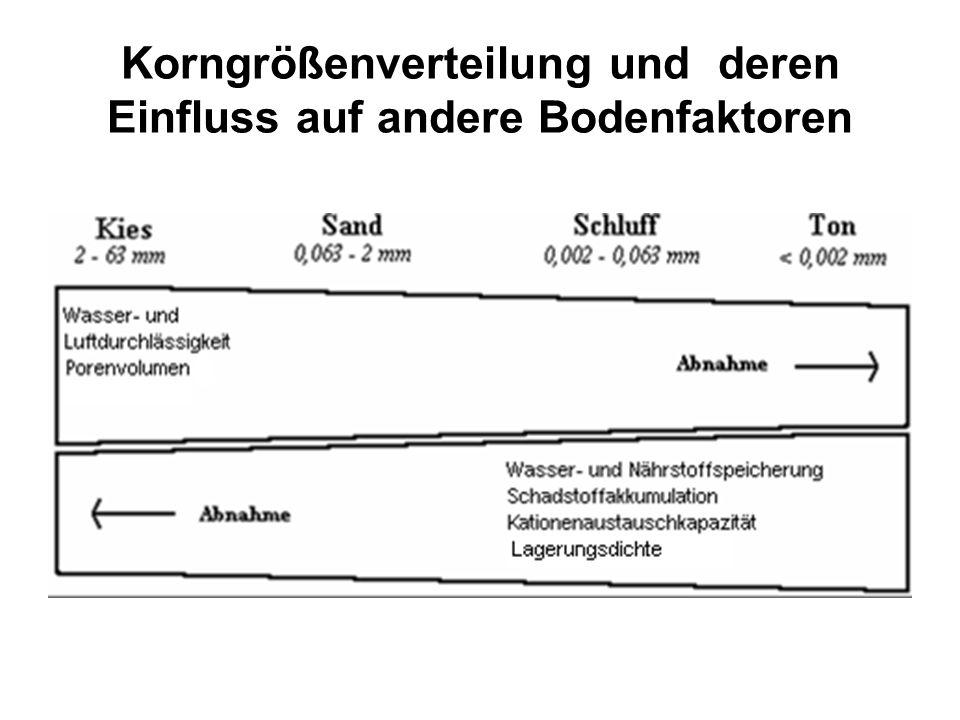 Stokes´sches Gesetz v - Sedimentationsgeschwindigkeit in [m/s] g - Erdbeschleunigung = 9.81 m/s² pf - Dichte von Quarz =2650 kg/m³ pw - Dichte von Wasser =1000 kg/m³ -dynamische Viskosität in [kg/s m)], temperaturabhängig dp - kugelförmiger Teilchendurchmesser in [m]