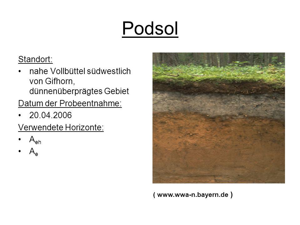 Podsol Standort: nahe Vollbüttel südwestlich von Gifhorn, dünnenüberprägtes Gebiet Datum der Probeentnahme: 20.04.2006 Verwendete Horizonte: A eh A e