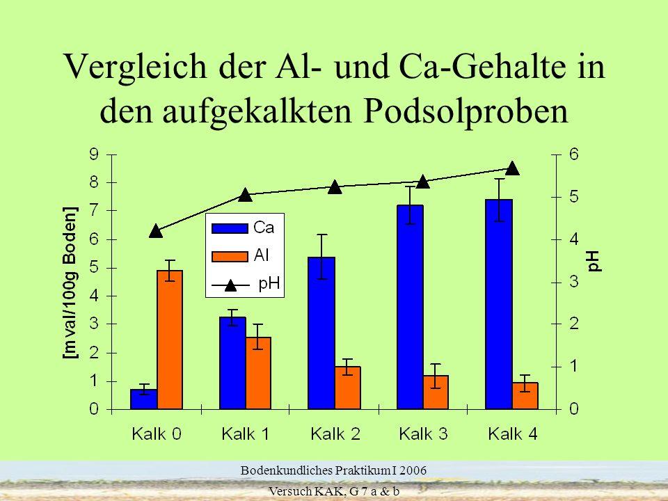 13 Vergleich der Al- und Ca-Gehalte in den aufgekalkten Podsolproben Bodenkundliches Praktikum I 2006 Versuch KAK, G 7 a & b