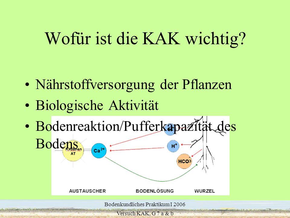 4 Wofür ist die KAK wichtig? Nährstoffversorgung der Pflanzen Biologische Aktivität Bodenreaktion/Pufferkapazität des Bodens Bodenkundliches Praktikum