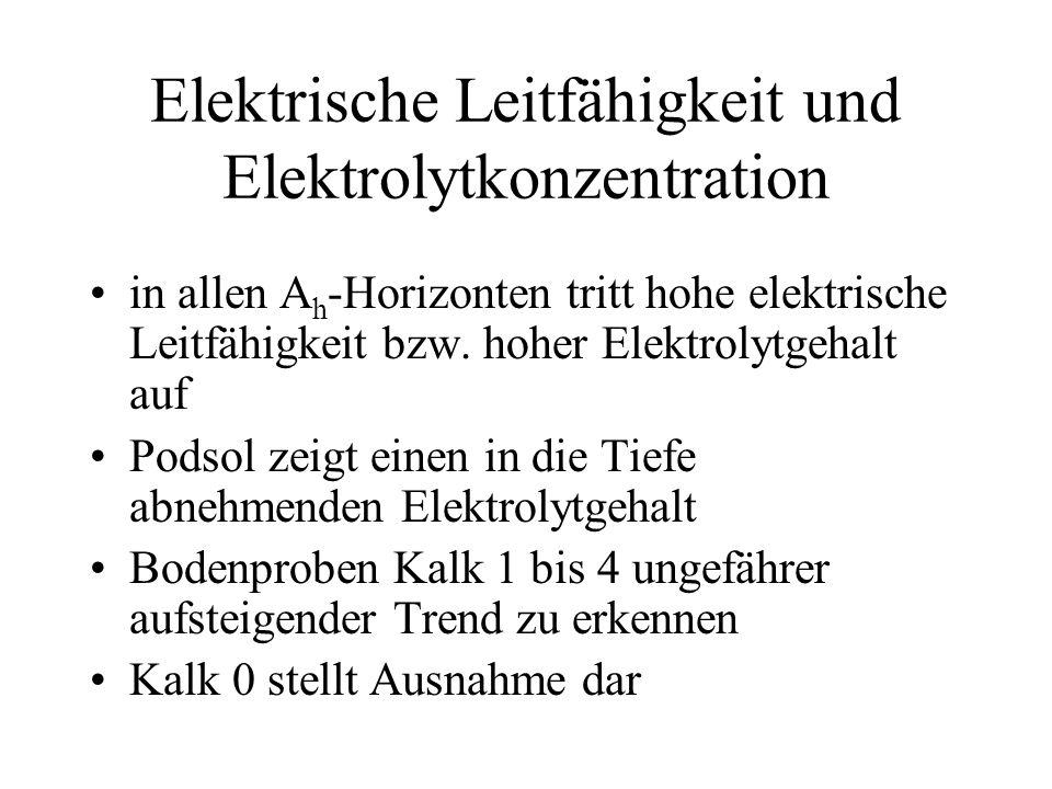 Elektrische Leitfähigkeit und Elektrolytkonzentration in allen A h -Horizonten tritt hohe elektrische Leitfähigkeit bzw. hoher Elektrolytgehalt auf Po