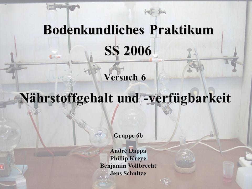 Bodenkundliches Praktikum SS 2006 Versuch 6 Nährstoffgehalt und -verfügbarkeit Gruppe 6b André Dappa Phillip Kreye Benjamin Vollbrecht Jens Schultze