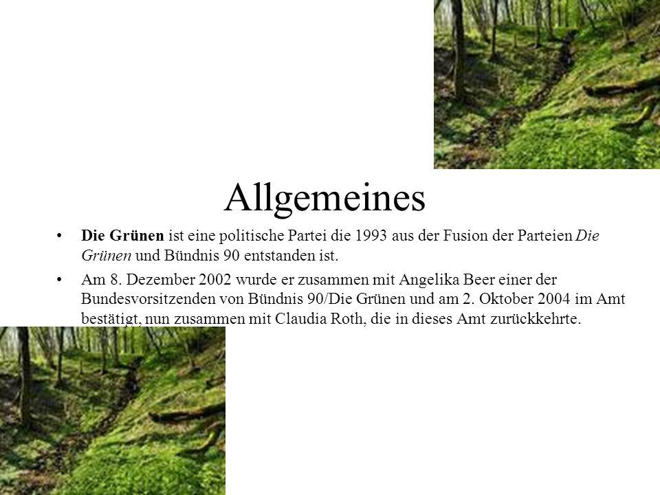 Allgemeines Die Grünen ist eine politische Partei die 1993 aus der Fusion der Parteien Die Grünen und Bündnis 90 entstanden ist. Am 8. Dezember 2002 w