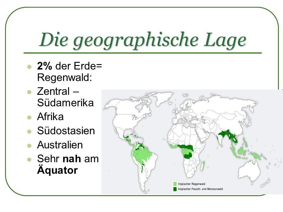 Die geographische Lage 2% der Erde= Regenwald: Zentral – Südamerika Afrika Südostasien Australien Sehr nah am Äquator