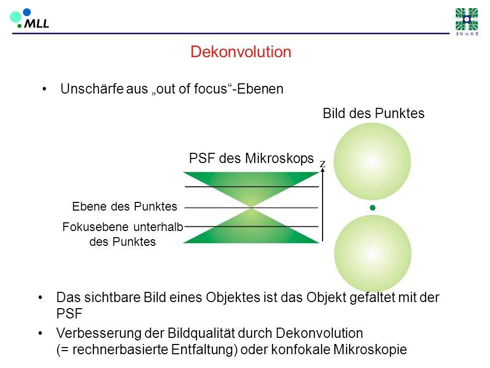 S N A K E Dekonvolution Unschärfe aus out of focus-Ebenen Das sichtbare Bild eines Objektes ist das Objekt gefaltet mit der PSF Verbesserung der Bildq