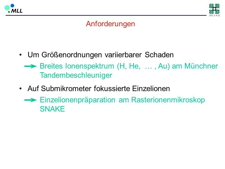 S N A K E Anforderungen Breites Ionenspektrum (H, He, …, Au) am Münchner Tandembeschleuniger Um Größenordnungen variierbarer Schaden Auf Submikrometer