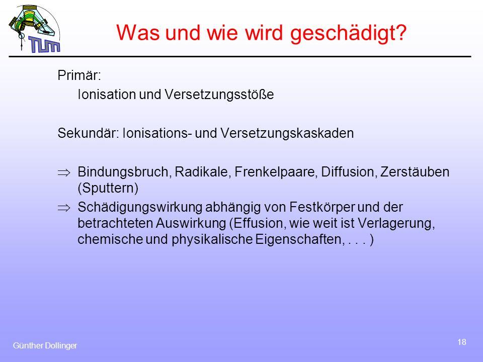 Günther Dollinger 18 Was und wie wird geschädigt? Primär: Ionisation und Versetzungsstöße Sekundär: Ionisations- und Versetzungskaskaden Bindungsbruch