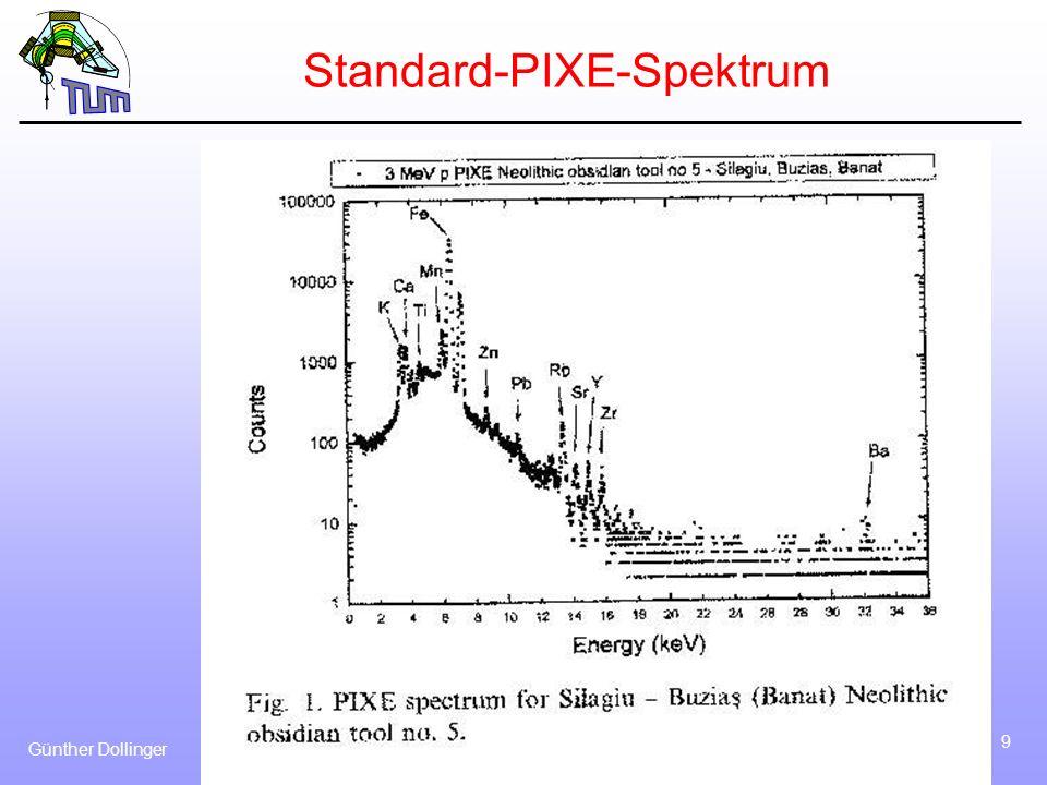 Günther Dollinger 10 PIXE-Anregung Anregung möglich mit allem, was innere Schalen anregt: Elektronen (EMPA): kleinstmöglicher Fokus aber - Proximity Effekt in dicken Proben - Bremsstrahlungsuntergrund (0,1 – 1%) Ionen (PIXE): Bremsstrahlungsuntergrund reduziert (bis < 1 ppm), dicke Proben (normal bis 50 µm, 1 mm möglich) aber- Fokussierbarkeit zur Zeit 100 nm - Strahlenschädigung X-rays (XRF): kleinste Strahlenschädigung - Streuuntergrund => lineare Polarisation => Synchrotron - Fokussierbarkeit mit neuen Fresnel- und Multilinsen, oder Spiegel