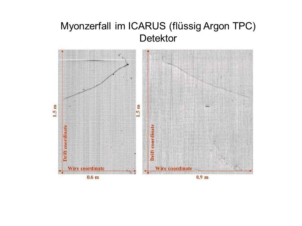 Myonzerfall im ICARUS (flüssig Argon TPC) Detektor