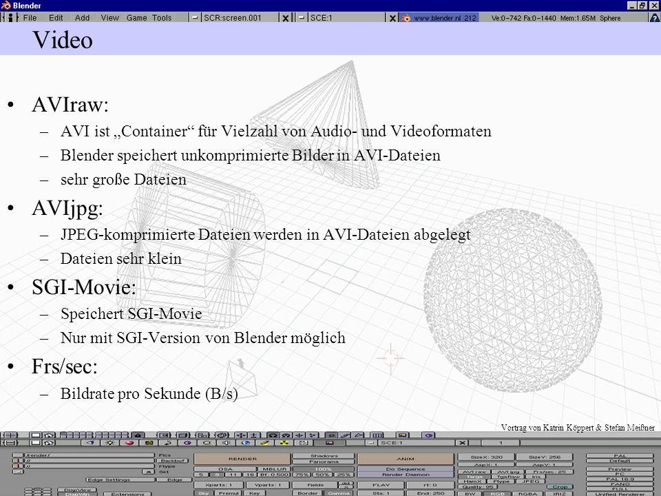 Vortrag von Katrin Köppert & Stefan Meißner Animation im Video