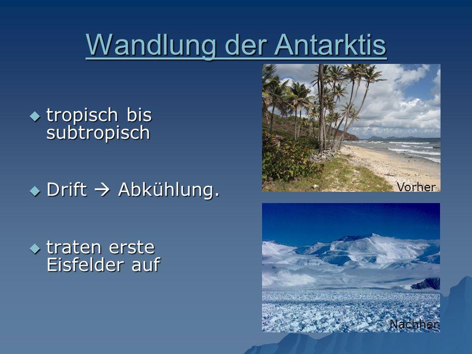 Wandlung der Antarktis Wandlung der Antarktis tropisch bis subtropisch tropisch bis subtropisch Drift Abkühlung. Drift Abkühlung. traten erste Eisfeld