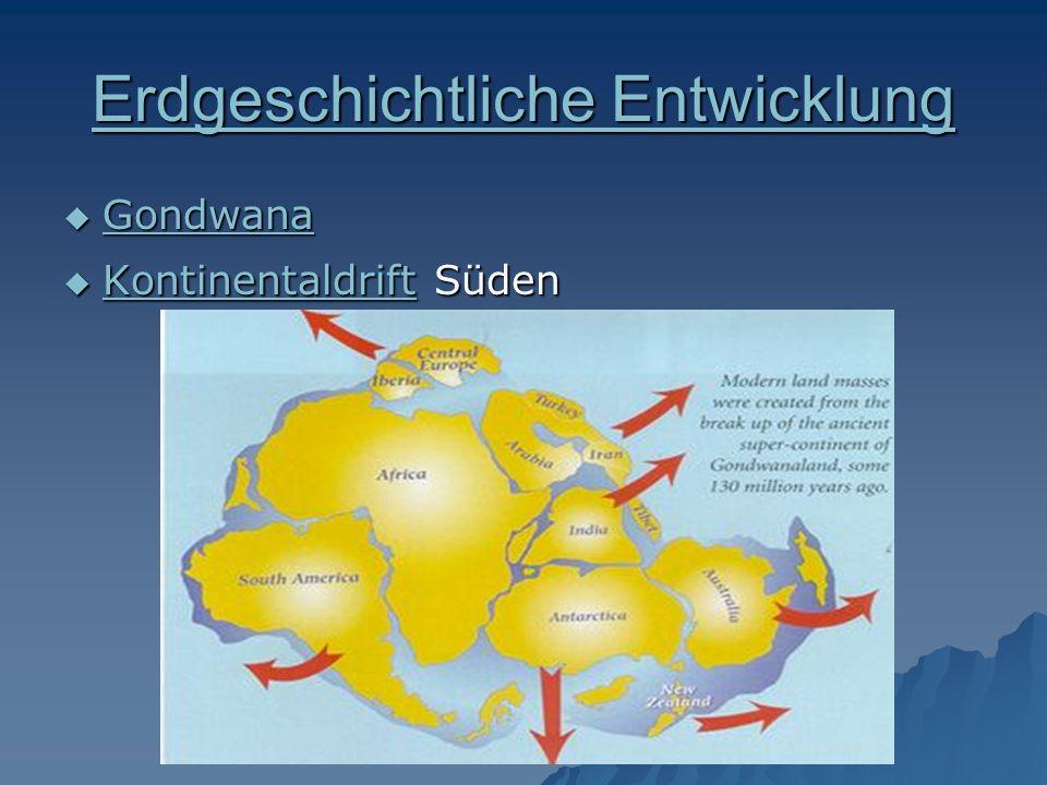 Erdgeschichtliche Entwicklung Erdgeschichtliche Entwicklung Gondwana Gondwana Gondwana Kontinentaldrift Süden Kontinentaldrift Süden Kontinentaldrift