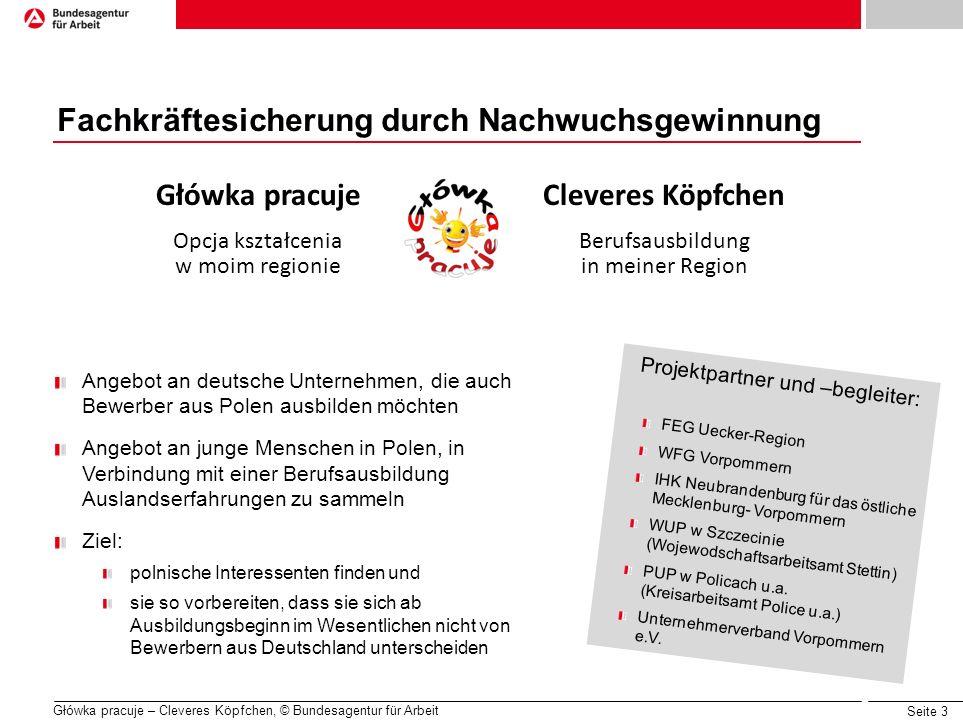 Seite 3 Główka pracuje – Cleveres Köpfchen, © Bundesagentur für Arbeit Fachkräftesicherung durch Nachwuchsgewinnung Główka pracuje Opcja kształcenia w