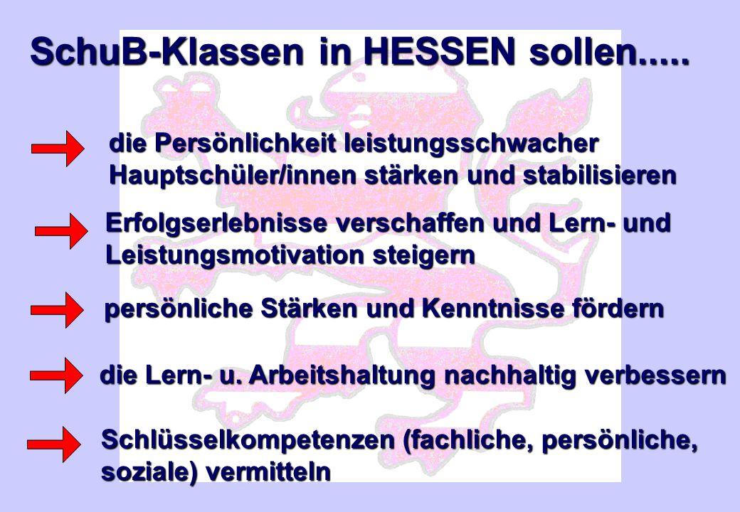 SchuB-Klassen in HESSEN sollen.....