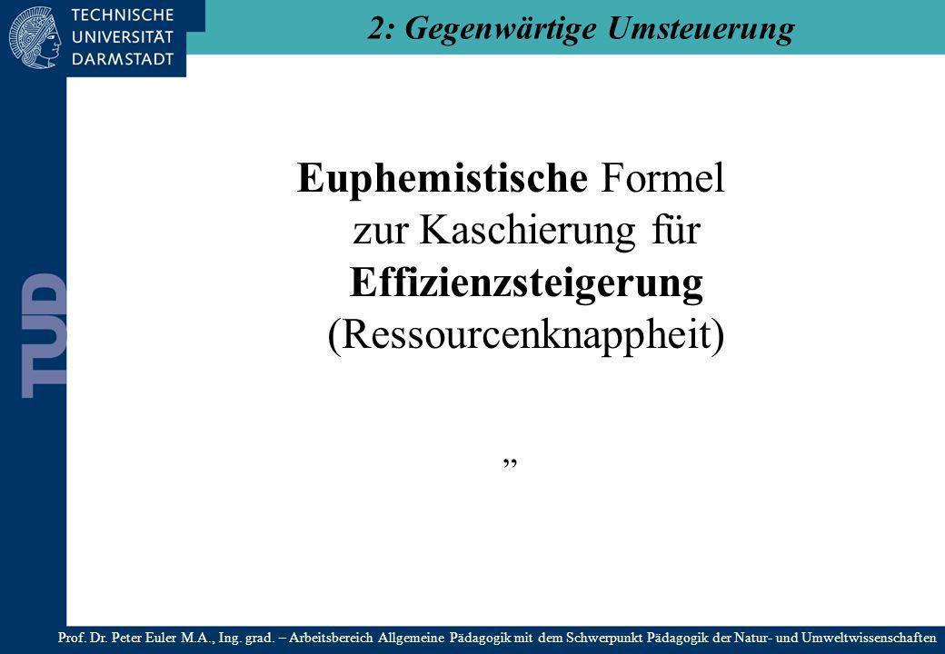 Euphemistische Formel zur Kaschierung für Effizienzsteigerung (Ressourcenknappheit) 2: Gegenwärtige Umsteuerung Prof. Dr. Peter Euler M.A., Ing. grad.