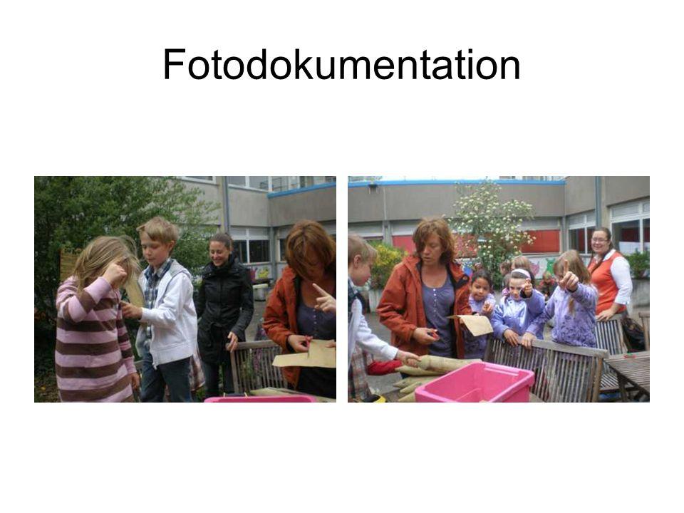 Fotodokumentation …nebenbei wurden Kräuter von der Kräuterspirale geerntet und zum Trocknen vorbereitet…