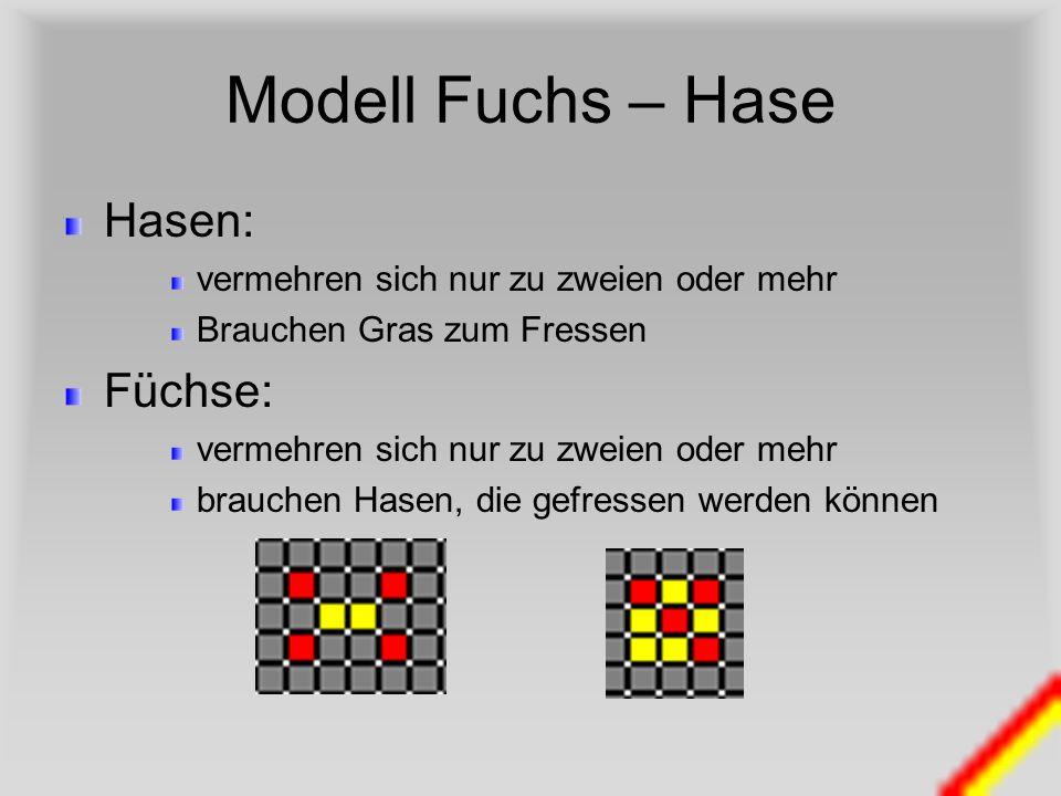 Modell Fuchs – Hase Hasen: vermehren sich nur zu zweien oder mehr Brauchen Gras zum Fressen Füchse: vermehren sich nur zu zweien oder mehr brauchen Ha