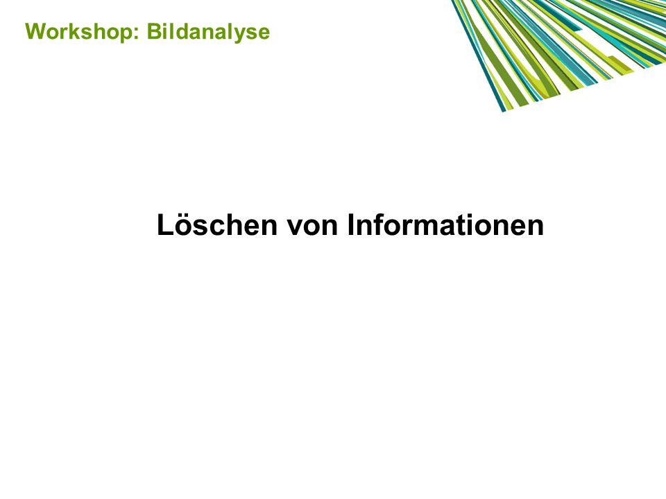 Workshop: Bildanalyse Löschen von Informationen