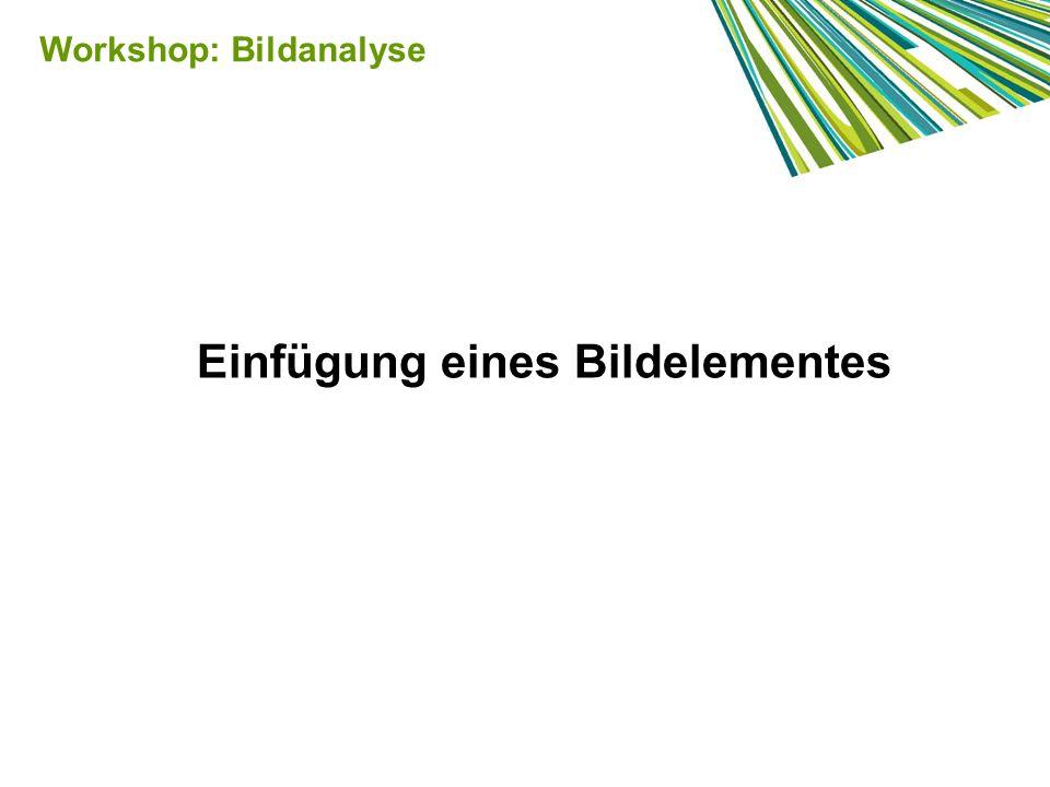 Einfügung eines Bildelementes Workshop: Bildanalyse
