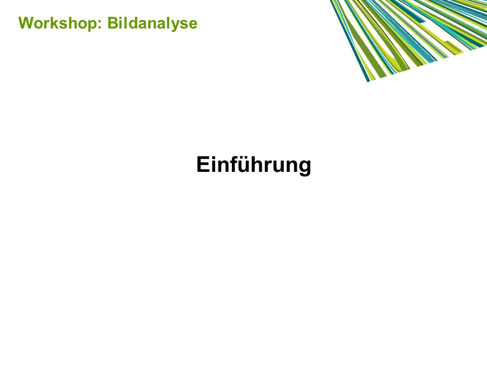 Inszenierung Workshop: Bildanalyse