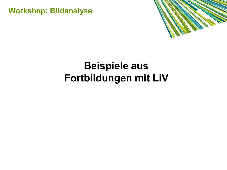 Beispiele aus Fortbildungen mit LiV Workshop: Bildanalyse