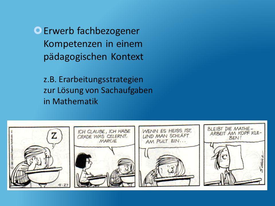 Erwerb fachbezogener Kompetenzen in einem pädagogischen Kontext z.B. Erarbeitungsstrategien zur Lösung von Sachaufgaben in Mathematik