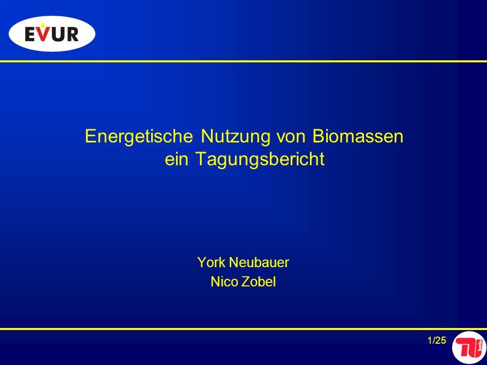 1/25 Energetische Nutzung von Biomassen ein Tagungsbericht York Neubauer Nico Zobel