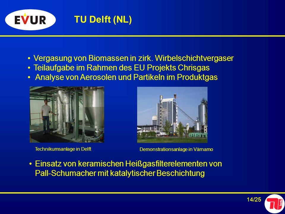 14/25 Vergasung von Biomassen in zirk. Wirbelschichtvergaser Teilaufgabe im Rahmen des EU Projekts Chrisgas Analyse von Aerosolen und Partikeln im Pro