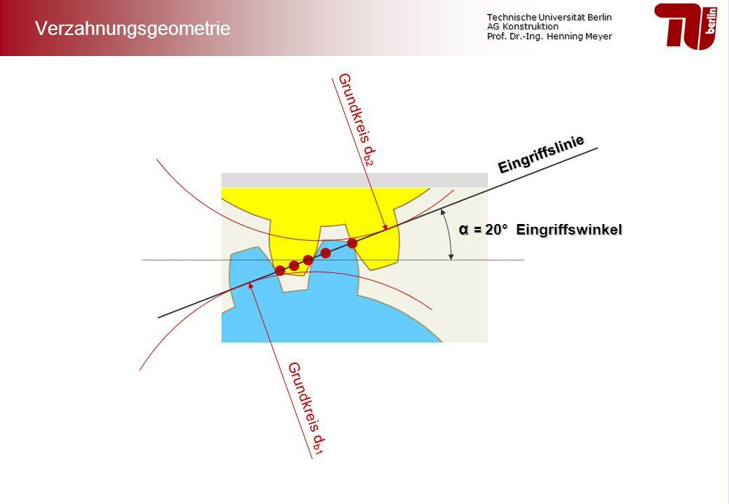 Technische Universität Berlin AG Konstruktion Prof. Dr.-Ing. Henning Meyer Eingriffslinie α = 20° Eingriffswinkel d b1 Grundkreis d b1 d b2 Grundkreis