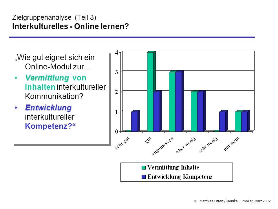 Matthias Otten / Monika Rummler, März 2002 Zielgruppenanalyse (Teil 3) Interkulturelles - Online lernen? Wie gut eignet sich ein Online-Modul zur... V
