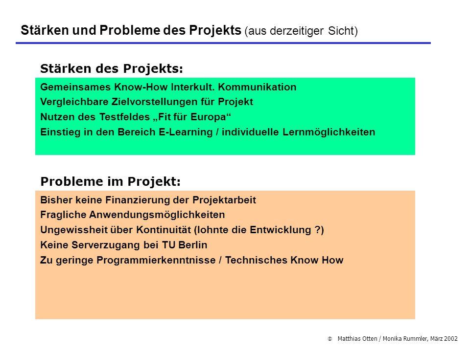 Matthias Otten / Monika Rummler, März 2002 Stärken und Probleme des Projekts (aus derzeitiger Sicht) Stärken des Projekts: Gemeinsames Know-How Interk