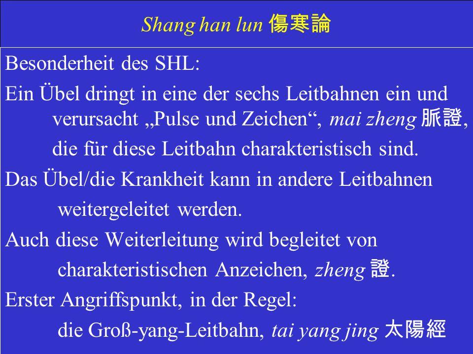 Shang han lun Besonderheit des SHL: Ein Übel dringt in eine der sechs Leitbahnen ein und verursacht Pulse und Zeichen, mai zheng, die für diese Leitbahn charakteristisch sind.