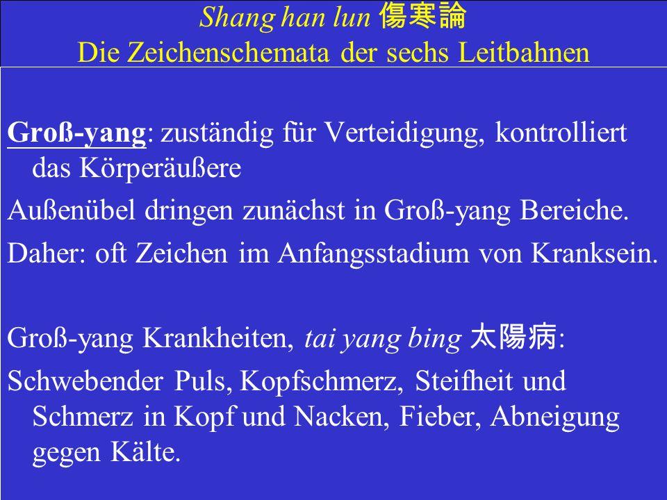 Shang han lun Die Zeichenschemata der sechs Leitbahnen Groß-yang: zuständig für Verteidigung, kontrolliert das Körperäußere Außenübel dringen zunächst in Groß-yang Bereiche.