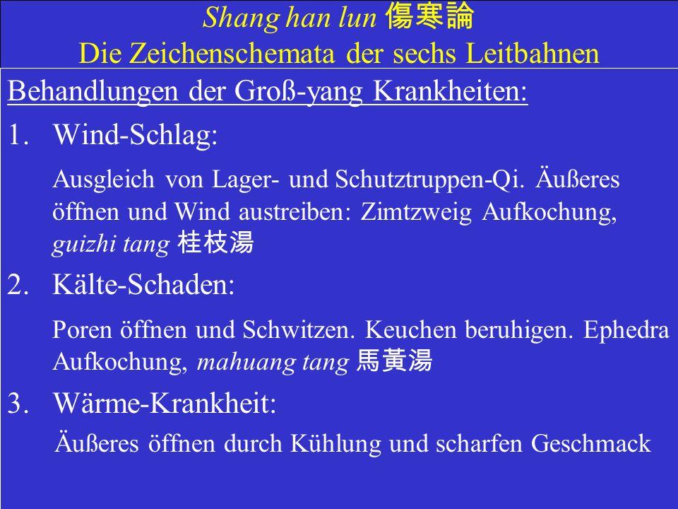 Shang han lun Die Zeichenschemata der sechs Leitbahnen Behandlungen der Groß-yang Krankheiten: 1.Wind-Schlag: Ausgleich von Lager- und Schutztruppen-Qi.