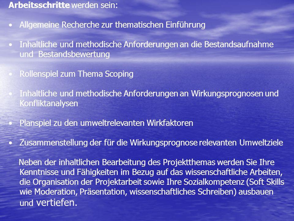Arbeitsschritte werden sein: Allgemeine Recherche zur thematischen Einführung Inhaltliche und methodische Anforderungen an die Bestandsaufnahme und Be