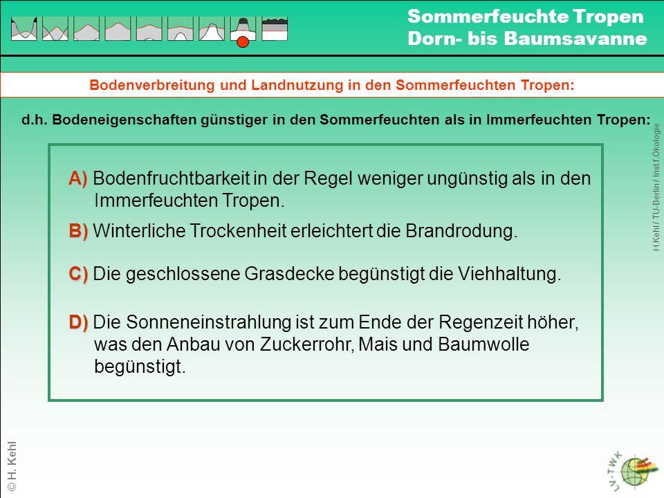 Bodenverbreitung und Landnutzung in den Sommerfeuchten Tropen: d.h.