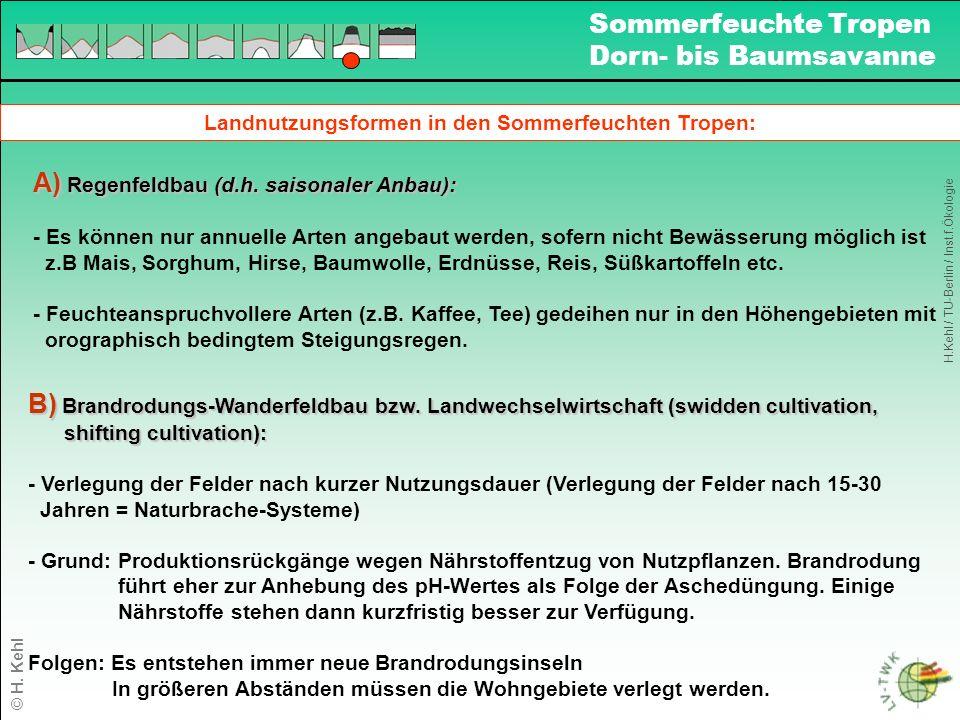 Landnutzungsformen in den Sommerfeuchten Tropen: A) Regenfeldbau (d.h.