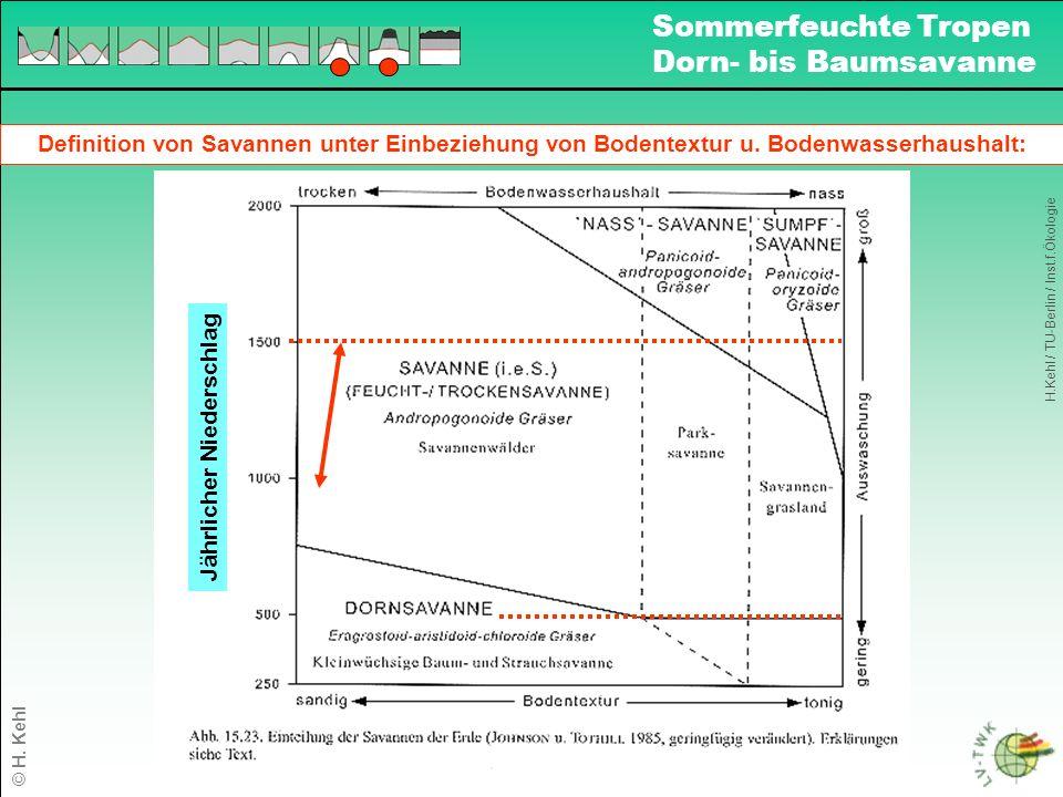 Bodenverbreitung und Landnutzung in den Sommerfeuchten Tropen: Bodencharakteristika bzgl.