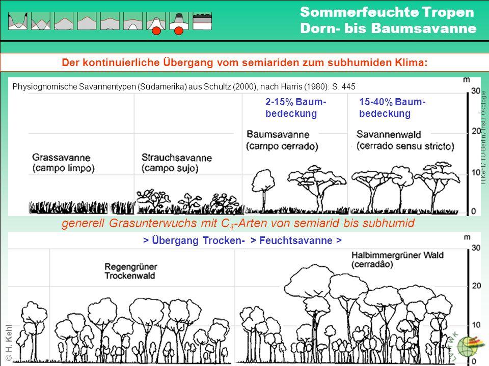Der kontinuierliche Übergang vom semiariden zum subhumiden Klima: 2-15% Baum- bedeckung 15-40% Baum- bedeckung Physiognomische Savannentypen (Südamerika) aus Schultz (2000), nach Harris (1980): S.
